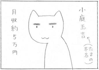 ねこ夫婦まんが たまともんちゃん-ren1
