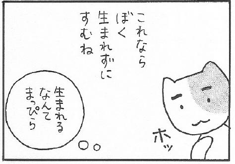 ねこ夫婦まんが たまともんちゃん-syussei11