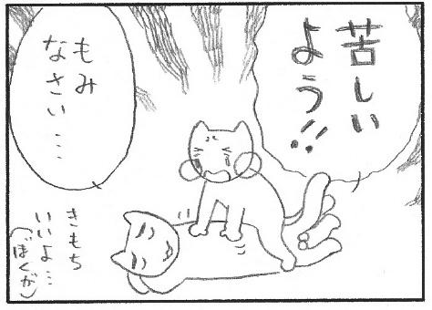 猫まんが たまともんちゃん-sawa3