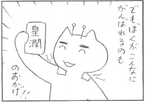 ねこ夫婦まんが たまともんちゃん-kojyun2