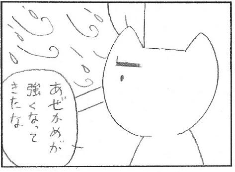 ねこ夫婦まんが たまともんちゃん-gou1