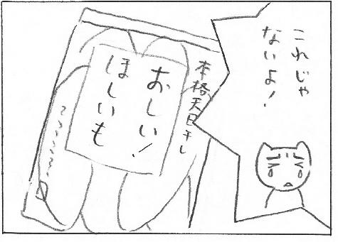 hoshiimo4