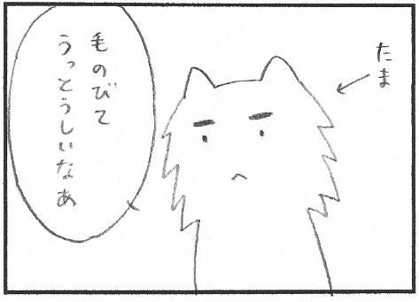 sanpatsu1