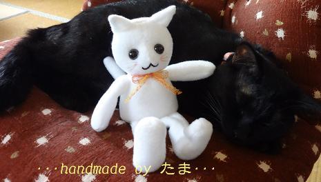 おすわり猫さん