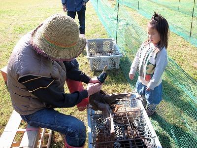 丹波有機農業祭2012003