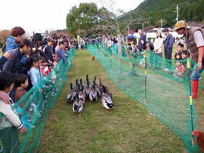丹波有機農業祭2012155