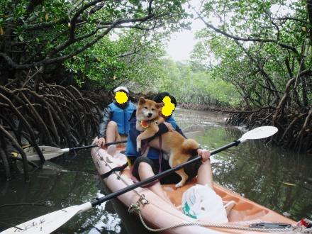 ishigaki-kayak4.jpg