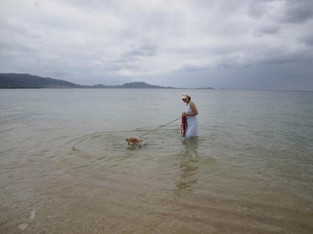 ishigaki-swim.jpg