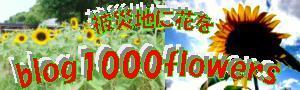 blog1000flowers02.jpg
