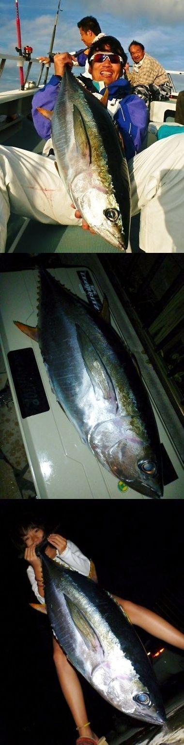 taroken キメジ 11.4キロ