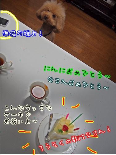 PC080001-1.jpg