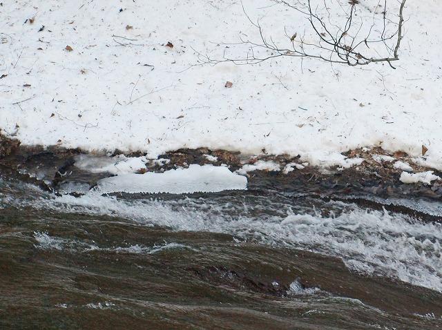20140205横谷峡の氷瀑 (20)