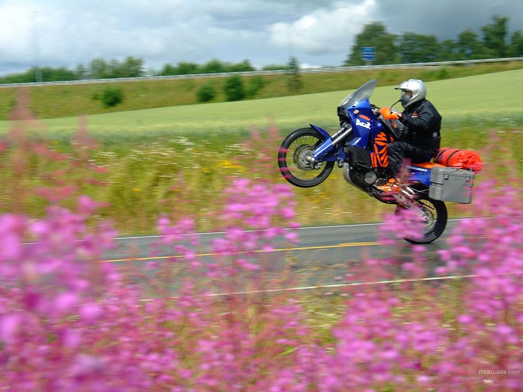 Suzuki_KTM_990_Adventure_2006_02_1024x768[1]