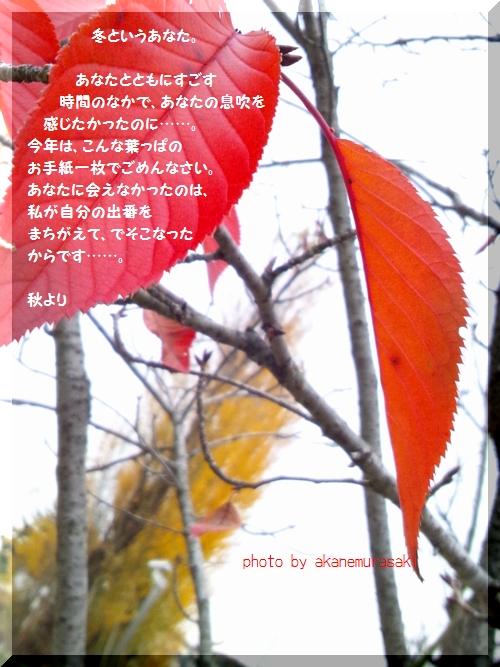 でそこなった秋