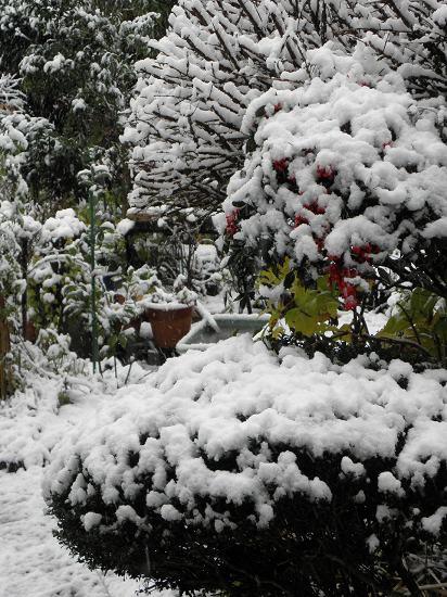 雪降る日となりました。