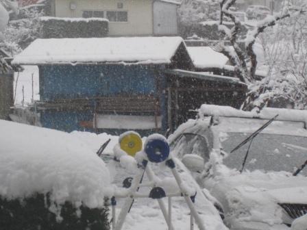 2012-03-10-雪1