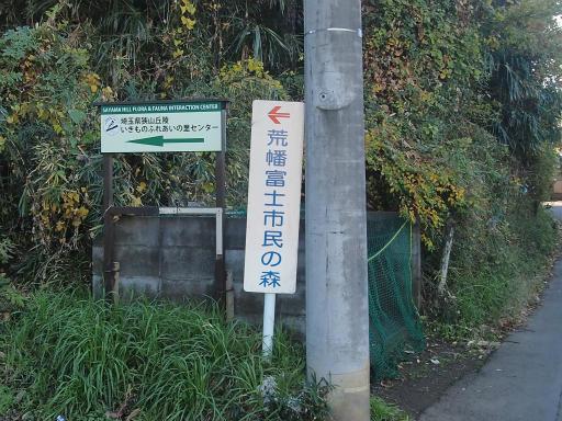 20131130・初冬散歩03
