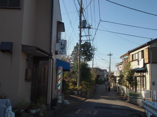 20131130・初冬散歩12