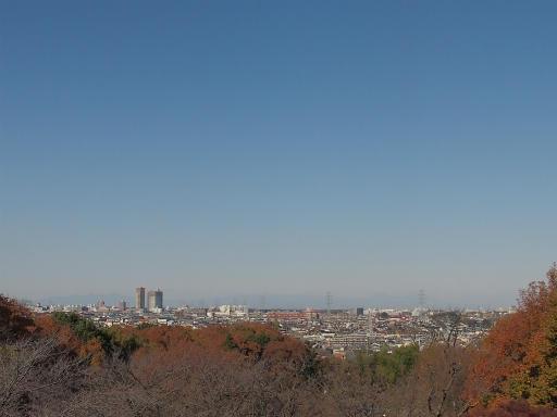 20131130・初冬散歩09