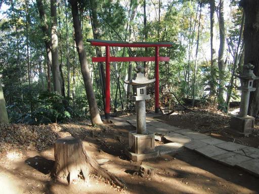 20131201・緑の森23・山の神神社