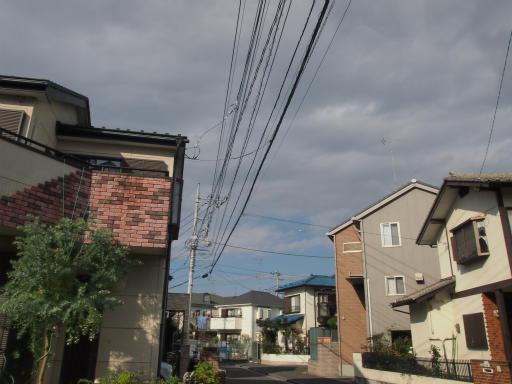 20131205・狭山湖01
