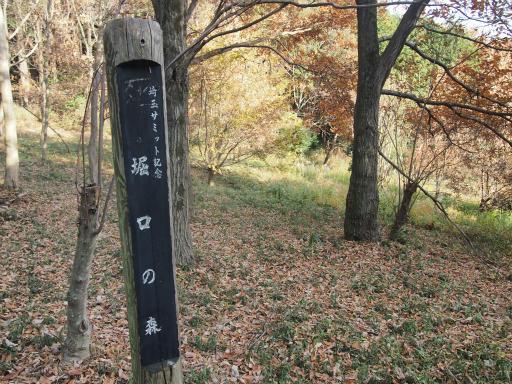 20131205・狭山湖09