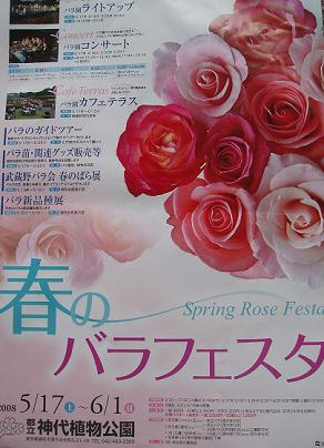 春のバラフェスタ