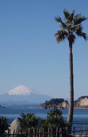 富士山南国風