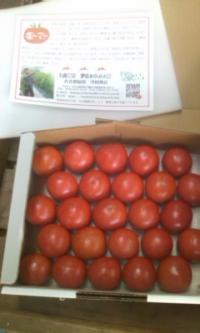 箱入り塩トマト