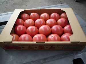 tomatobox.jpg