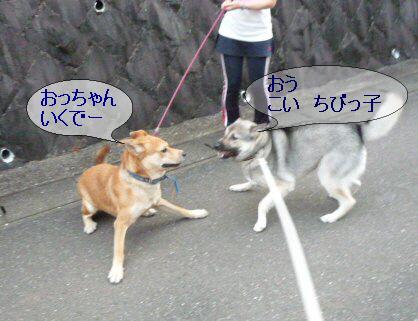 編集_1倫太郎