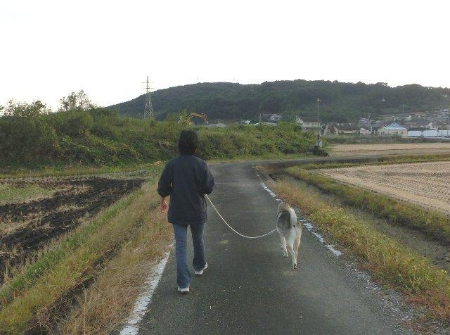 おかさんと散歩
