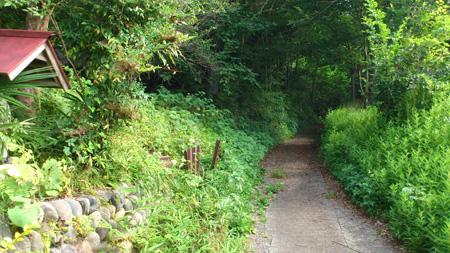 野巻林道入口2