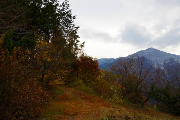 登山道04