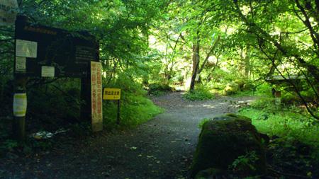 白久林道コース入口
