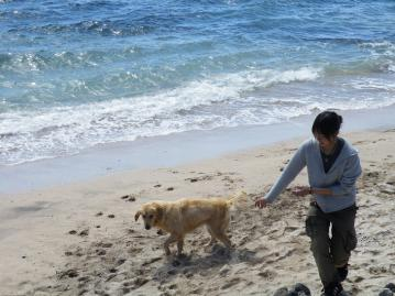 チリ_犬③