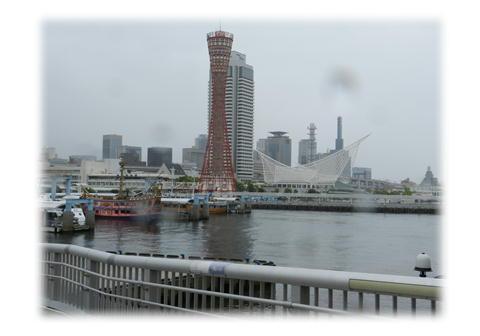 5.29 台風来てマス。。。