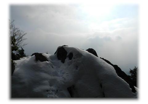 1.9 カンノ木山山頂