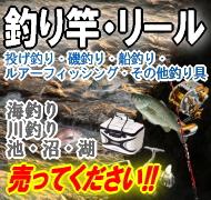 logo-kaitori-fish01s_.jpg