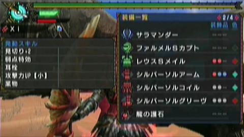 楽園×ガチ双剣(20分37秒)装備