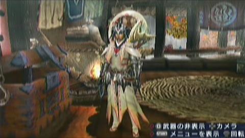 楽園×ガチ双剣(18分54秒)装備見た目