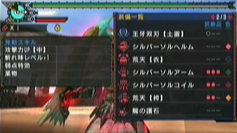 楽園×ガチ双剣(18分54秒)装備