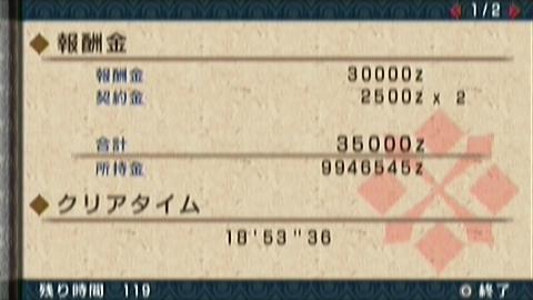 楽園×ガチ双剣(18分54秒)正式タイム