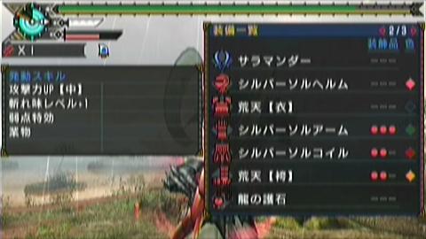 水番長×ガチ双剣(19分51秒)装備