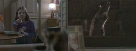 ラ 窓にネズミを発見