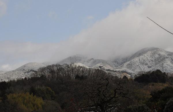 9雪DSC_0067