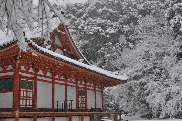 14雪DSC_0161