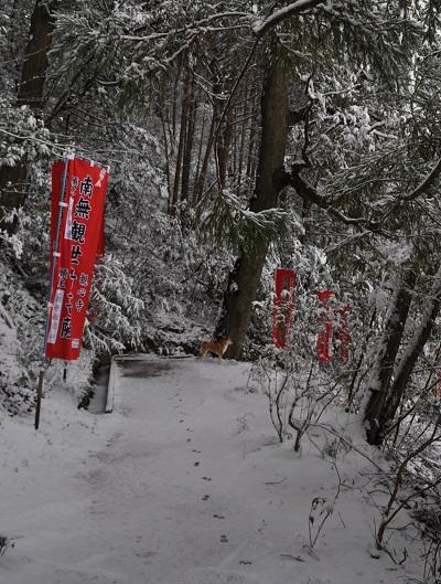 14雪DSC_0250