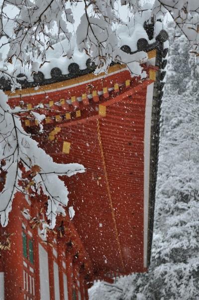 14雪DSC_0160