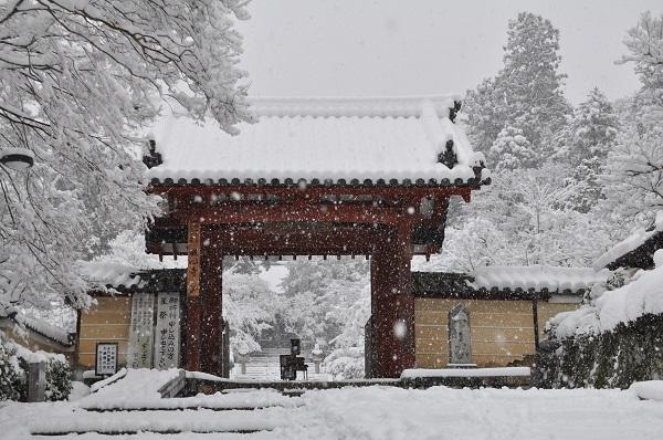 14雪DSC_0138